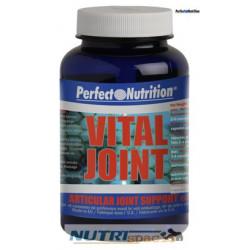 Vital Joint - 15 Ampollas